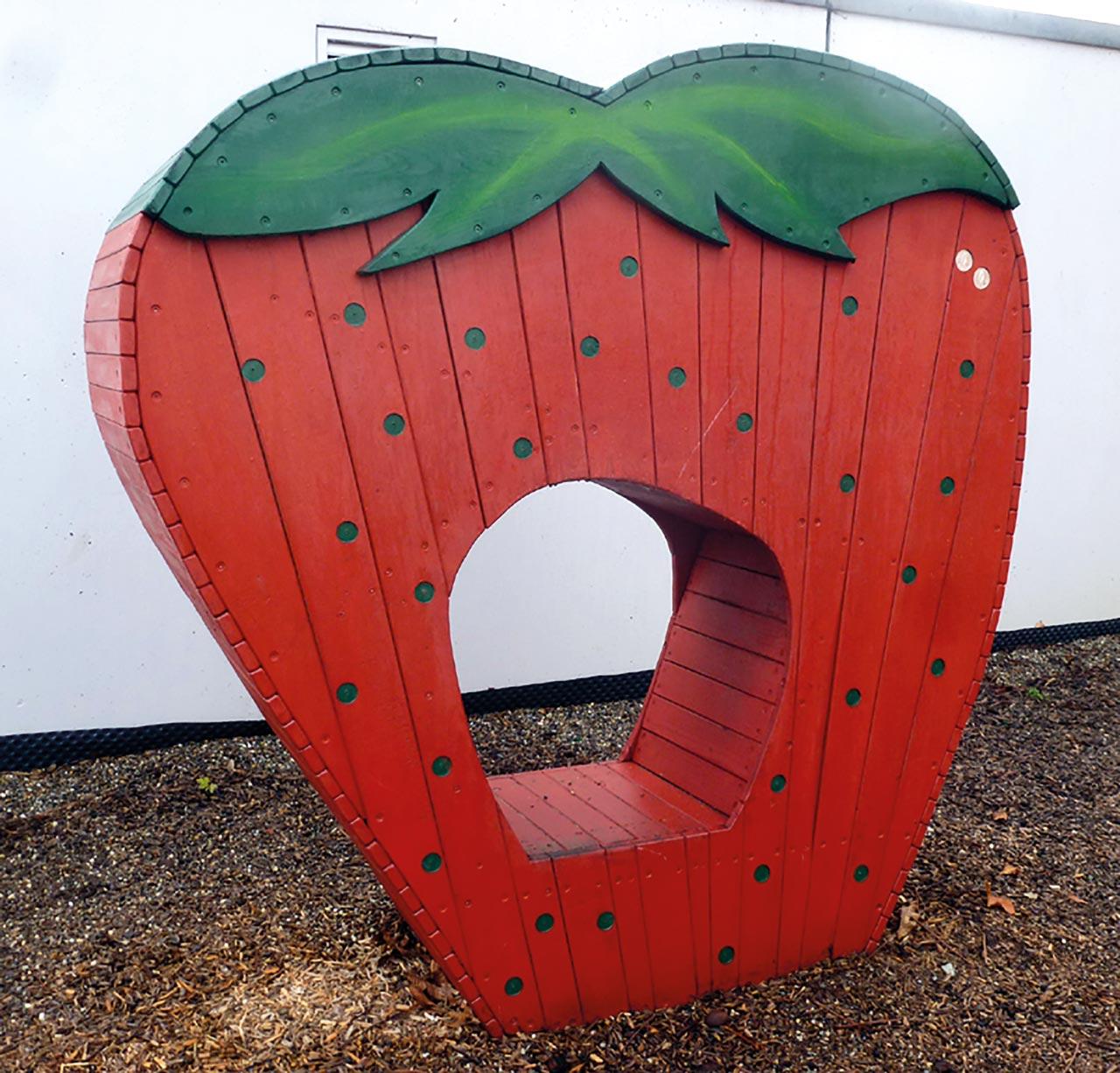 H 74 Erdbeere Kletterbeere