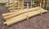 Womit wir bauen - splintfreie Robinienstämme für Spielgeräte